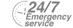 24/7 Emergency Service Pest Control in Shepherd's Bush, W12. Call Now! 020 8166 9746