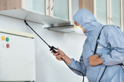 Home Pest Control, Pest Control in Shepherd's Bush, W12. Call Now 020 8166 9746